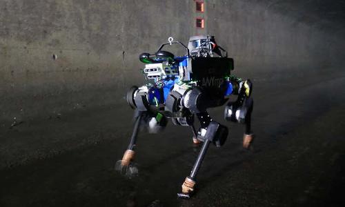 The ANYmal robot